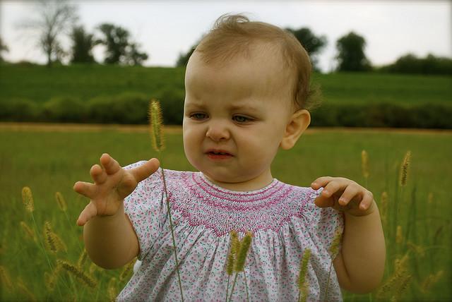 Bebê mexendo em planta